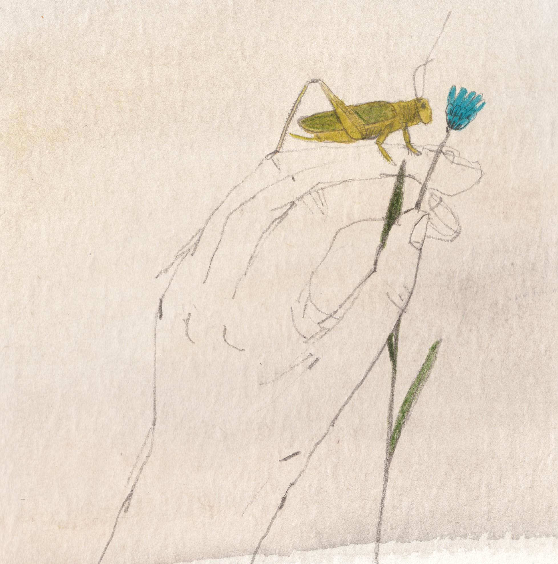 Artwork for Recordings of Indrė Gaskaitė